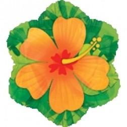 JuniorShape: Orange Hibiscus