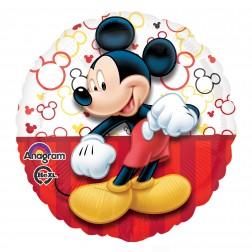 Standard Mickey Portrait