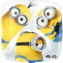 Standard Despicable Me Group