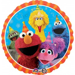 Standard Sesame Street Fun
