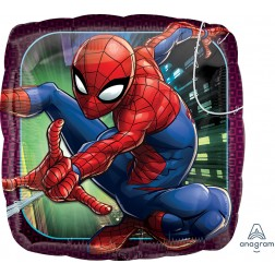 Standard Spider-Man Animated