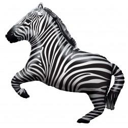 "28"" SP: BV Zebra Shape"