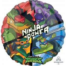 Standard Rise of the TMNT