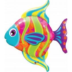 "35"" Fashionable Fish Shape"